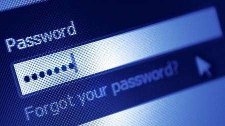 password7.jpg